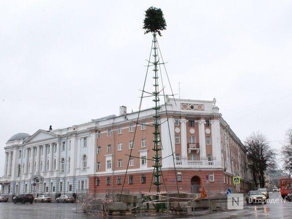 Главную городскую елку начали устанавливать на площади Минина и Пожарского - фото 1