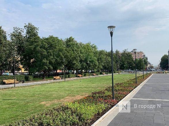 Сквер на площади Горького открыли для нижегородцев - фото 4