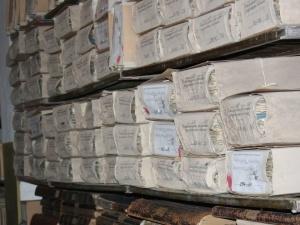 Первые нижегородские газеты представили в областном архиве
