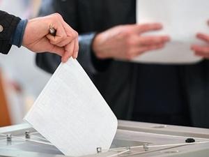 Каждый пятый житель Нижнего Новгорода не хочет участвовать в выборах