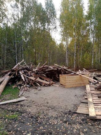 Свалку хлеба и мусора обнаружили жители Володарского района - фото 2