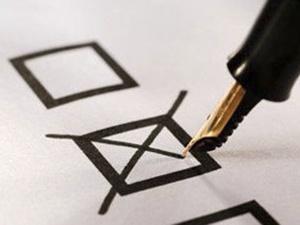 Итоги голосования на одном из участков в Канавинском районе признаны недействительными