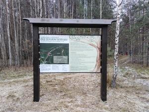 Новый экологический маршрут открылся в природном парке «Воскресенское Поветлужье»