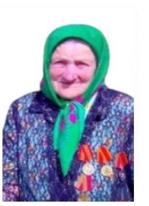 93-летняя бабушка заблудилась в ардатовском лесу - фото 1