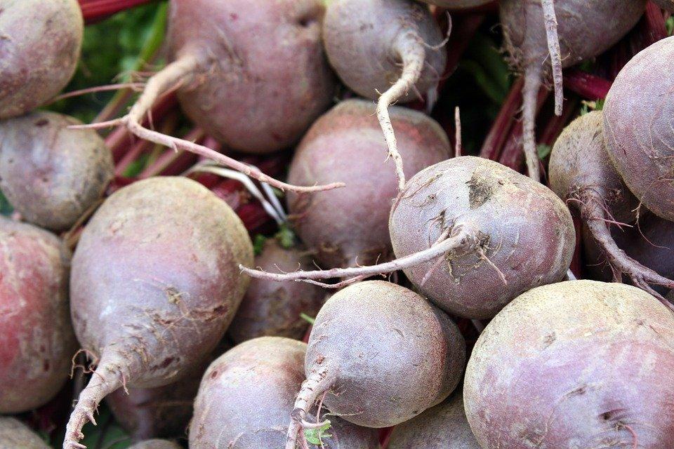 Семь овощей и фруктов, которые стоит покупать в декабре - фото 4