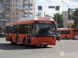 Еще одна выделенная полоса для общественного транспорта появится в Нижнем Новгороде