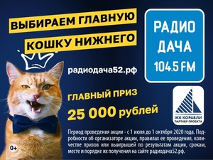Главная кошка Нижнего Новгорода заработает 25 000 рублей