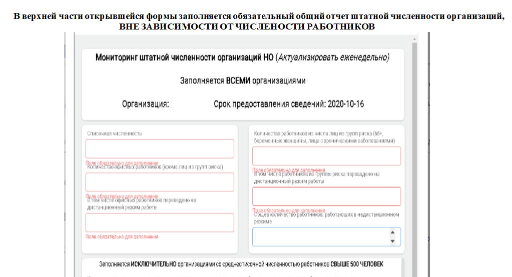 Инструкция по заполнению отчета о сотрудниках на «удаленке» разработана для нижегородских работодателей - фото 8