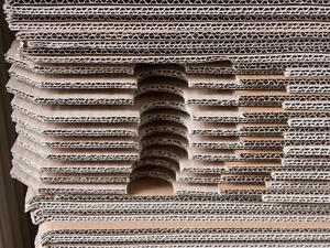 Крупную фабрику по производству бумажно-картонной продукции планируется построить в Дзержинске