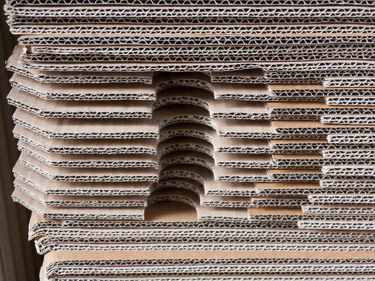 Крупную фабрику по производству бумажно-картонной продукции планируется построить в Дзержинске - фото 1