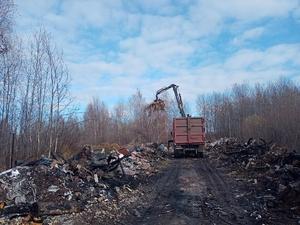 Несанкционированную свалку в 800 кубометров ликвидируют в Автозаводском районе