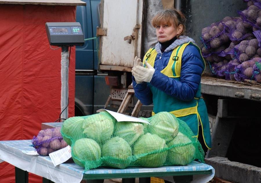 Капуста и лук подешевели в Нижегородской области - фото 1